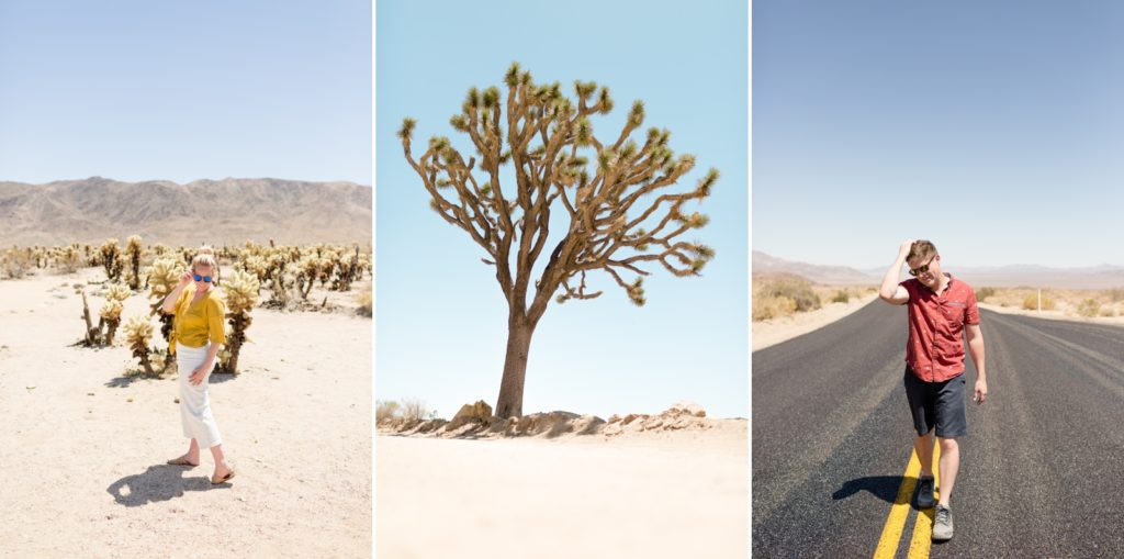photograph with top 10 things to do in Joshua Tree