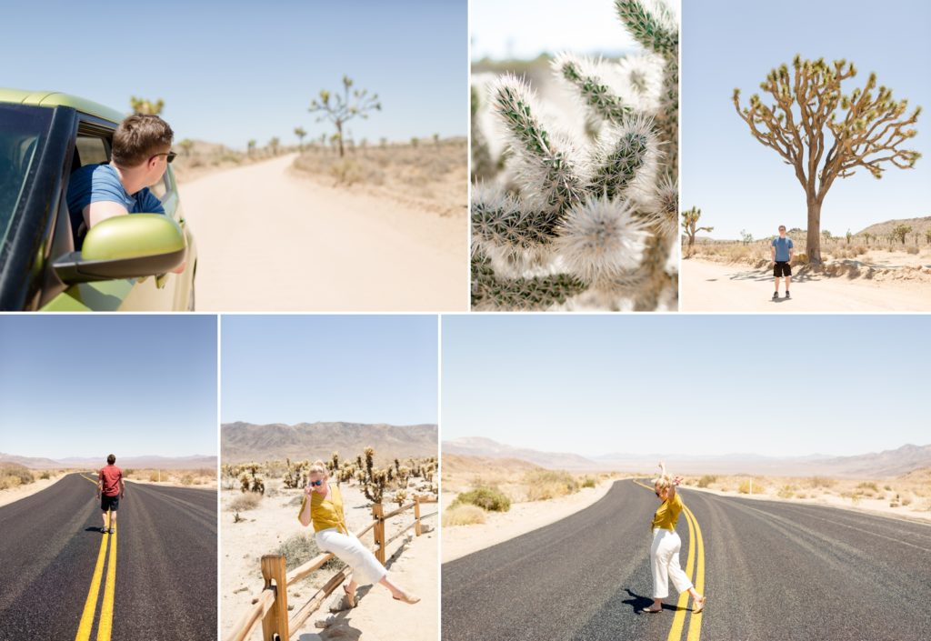 Road trip to Joshua Tree and things to do in Joshua Tree